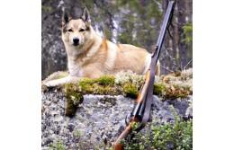Календарь охотника в Республике Беларусь